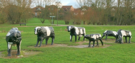 History Of The Real Concrete Cows From Milton Keynes